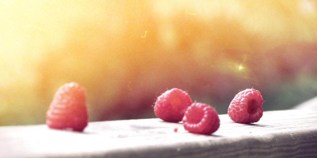 http://thedhoomdhaamweddings.com/wp-content/uploads/2014/12/berries1-1080x540.jpg